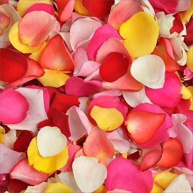 478804358 - Fresh Rose Petals Mix, One Gallon Bag