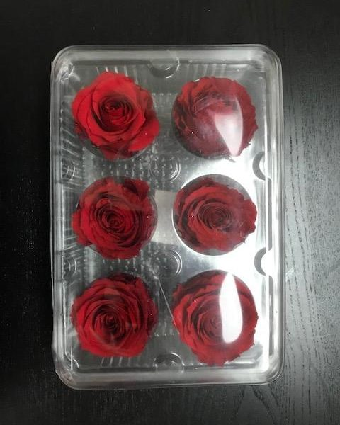 6 pack preserved roses 480x600 - Preserved Roses Box of 6 Heads