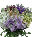 Assorted Stock Flowers