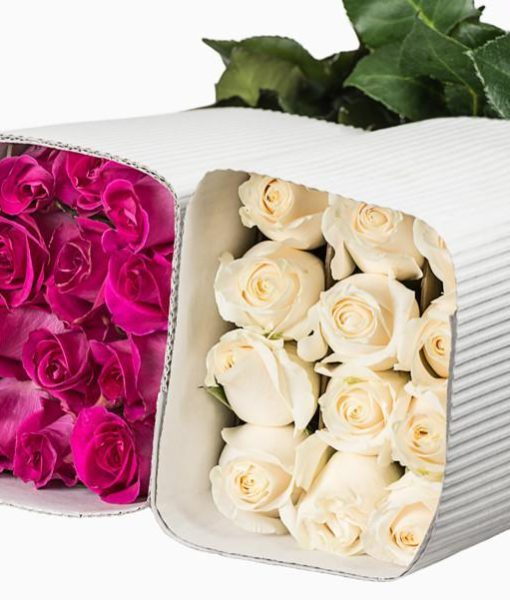 bunches of roses 510x600 - 1,000 Roses in Assorted Color Wholesale Bulk